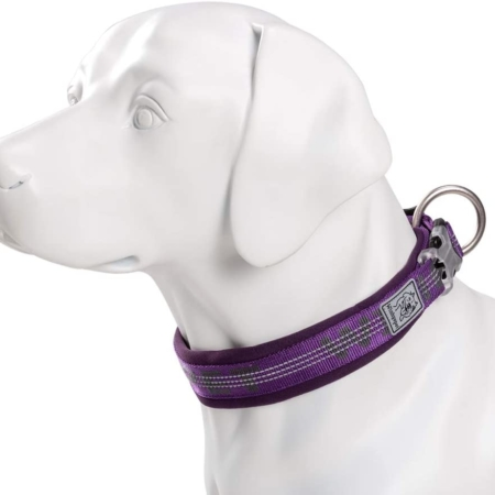 Chai's Choice Best Neoprene Padded 3M Reflective Dog Collar Purple