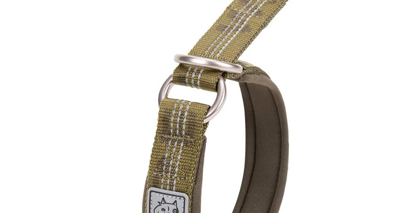 Chai's Choice Best Neoprene Padded Half Choke Training Collar