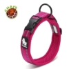 Chais Choice Collar Fuchsia