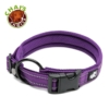 Chais Choice Collar Purple