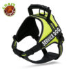 Chai's Choice Service Dog Vest Harness Lemon Lime