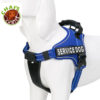 Royal-Blue-Service-Dog-Vest-Harness 2